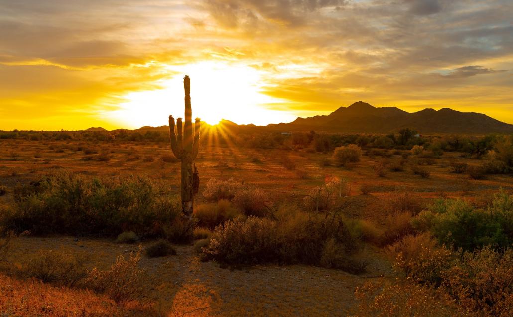 desert climates 1